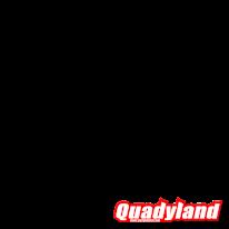 QUAD LANDER 300SL