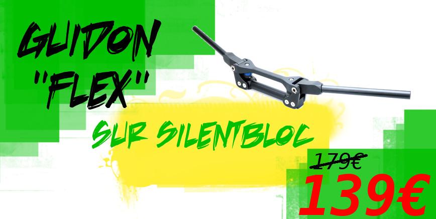 guidon silentbloc